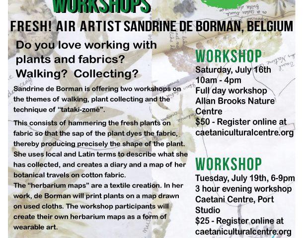 Sandrine de Borman workshops